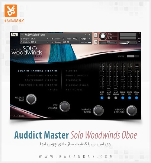 Auddict Master Solo Woodwinds Oboe