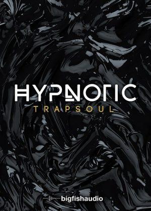 دانلود مجموعه سمپل و لوپ Big Fish Audio Hypnotic Trapsoul