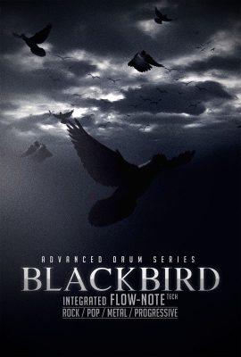 دانلود وی اس تی درام 8DiO Advanced Drum Series Blackbird