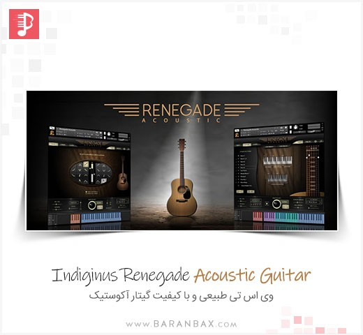Indiginus Renegade Acoustic Guitar