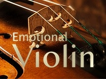 Best Service Emotional Violin